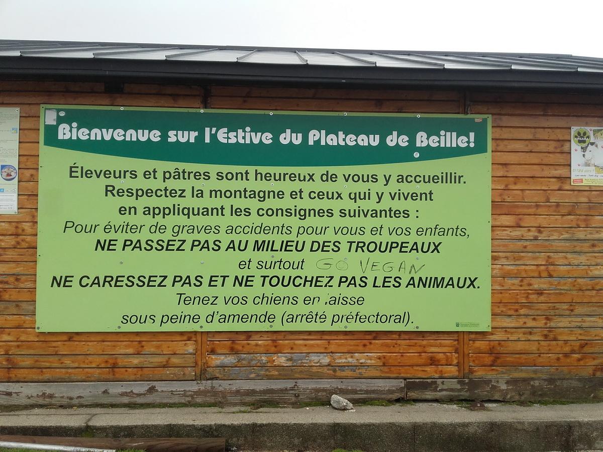 plateau de Beille 03